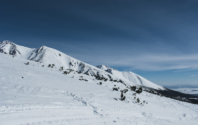 image of an ice-covered mountain slope